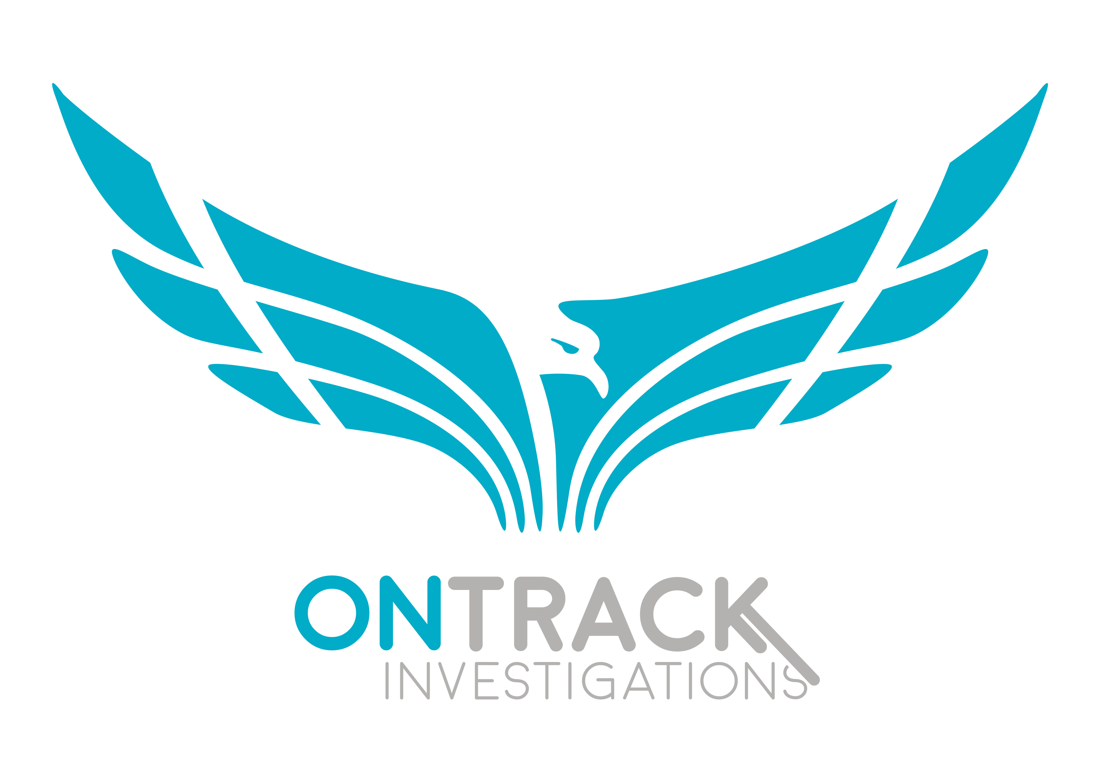 On Track Investigations